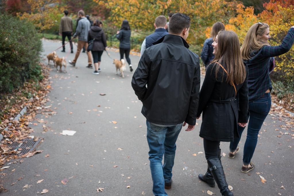 Photo 2 Central Park - Bow Bridge secret proposal. | VladLeto