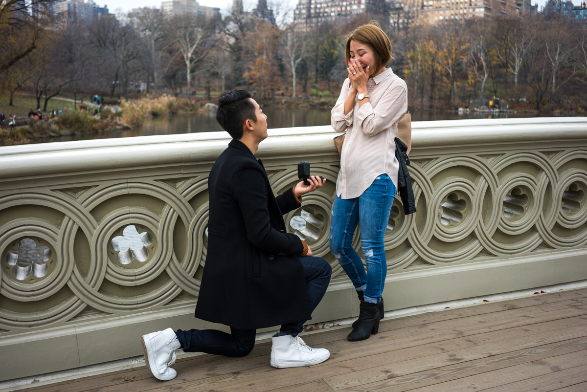 Photo 2 Bow Bridge Marriage proposal NYC | VladLeto