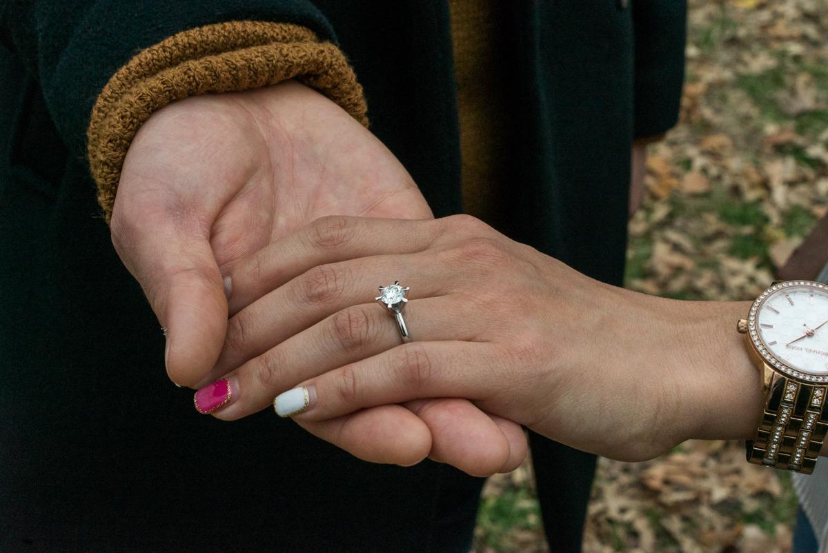 Photo 10 Bow Bridge Marriage proposal NYC | VladLeto