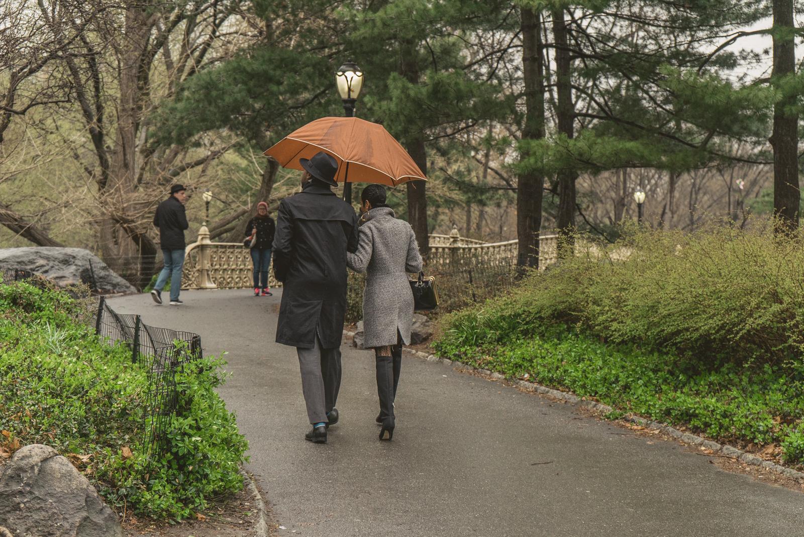 Photo 5 Pine Bank bridge Central Park Marriage Proposal | VladLeto