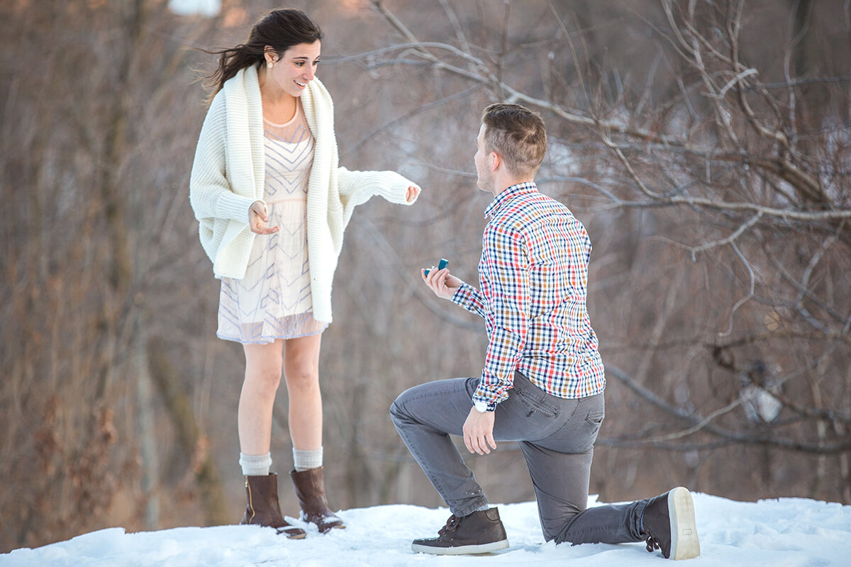 Photo 2 Central Park Winter Proposal. February 2015 | VladLeto