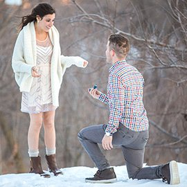 Central Park Winter Proposal. February 2015