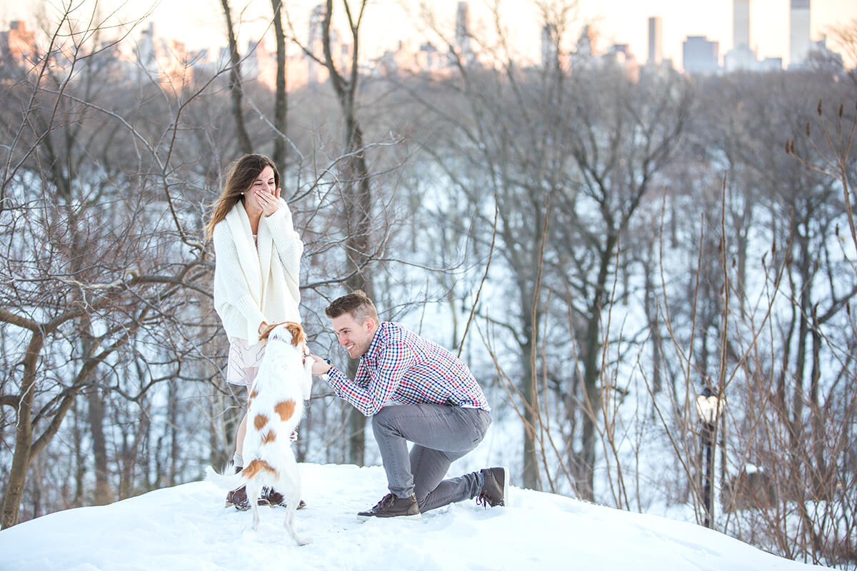 Photo 5 Central Park Winter Proposal. February 2015 | VladLeto