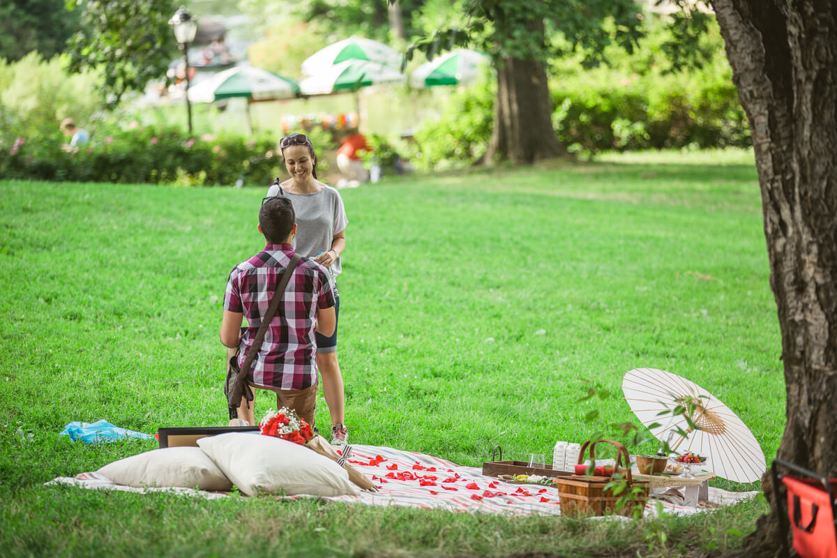 Photo 3 Picnic Proposal in Central Park | VladLeto