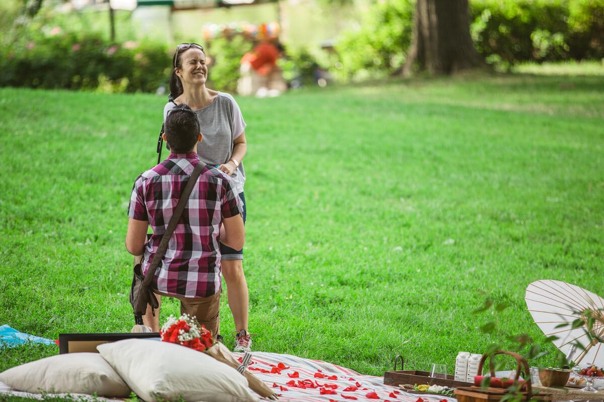 Photo 3 Picnic Proposal in Central Park | VladLeto
