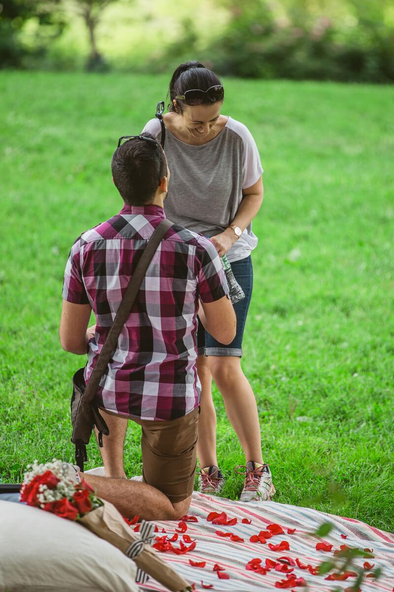Photo 4 Picnic Proposal in Central Park | VladLeto