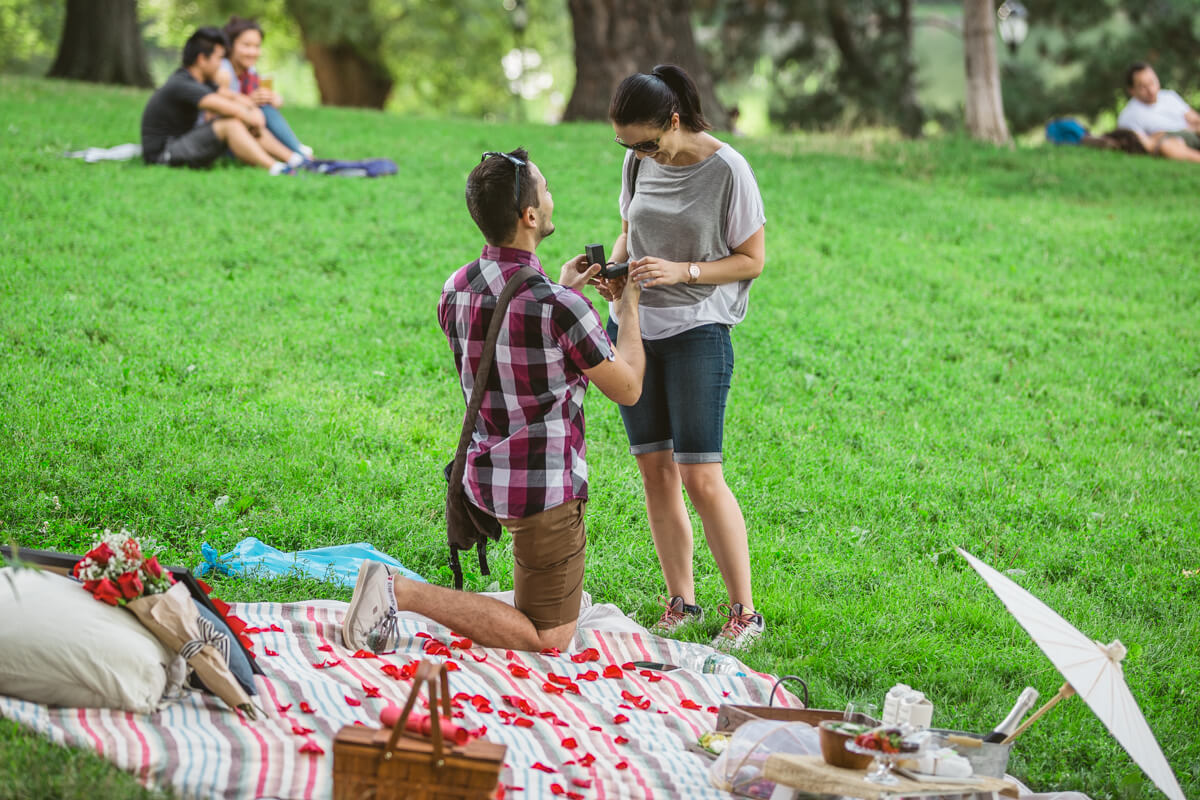 Photo 6 Picnic Proposal in Central Park | VladLeto