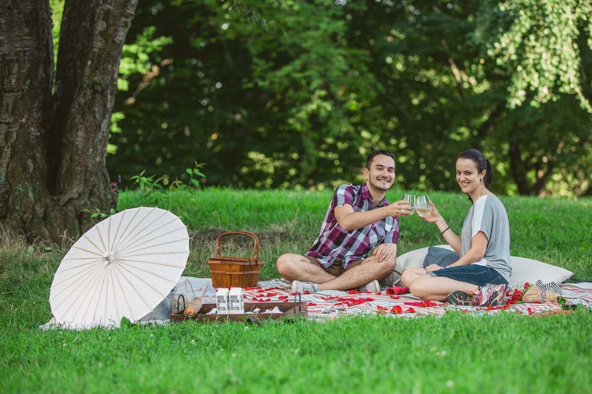Photo 18 Picnic Proposal in Central Park | VladLeto