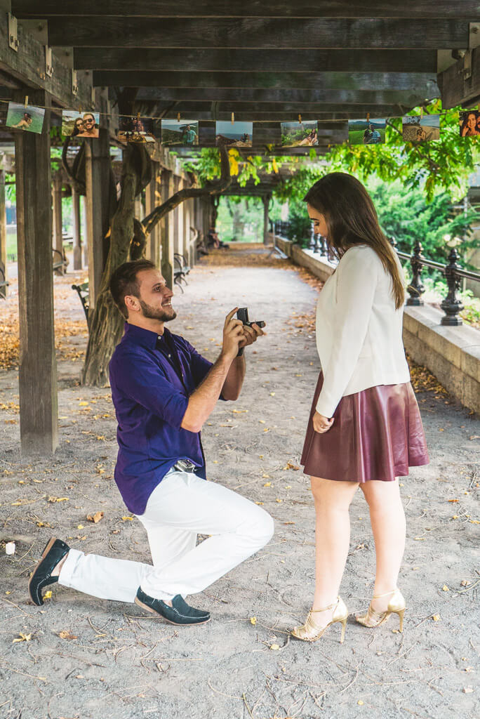Photo 2 Central Park Marriage Proposal.   VladLeto