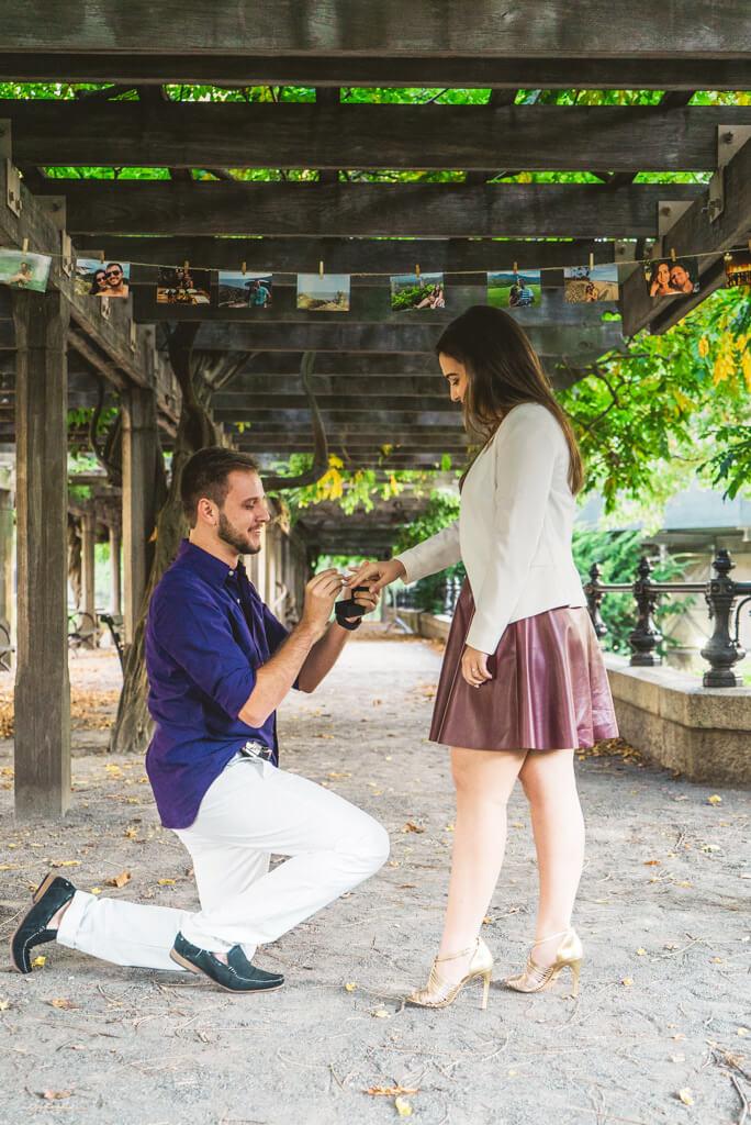 Photo 3 Central Park Marriage Proposal.   VladLeto