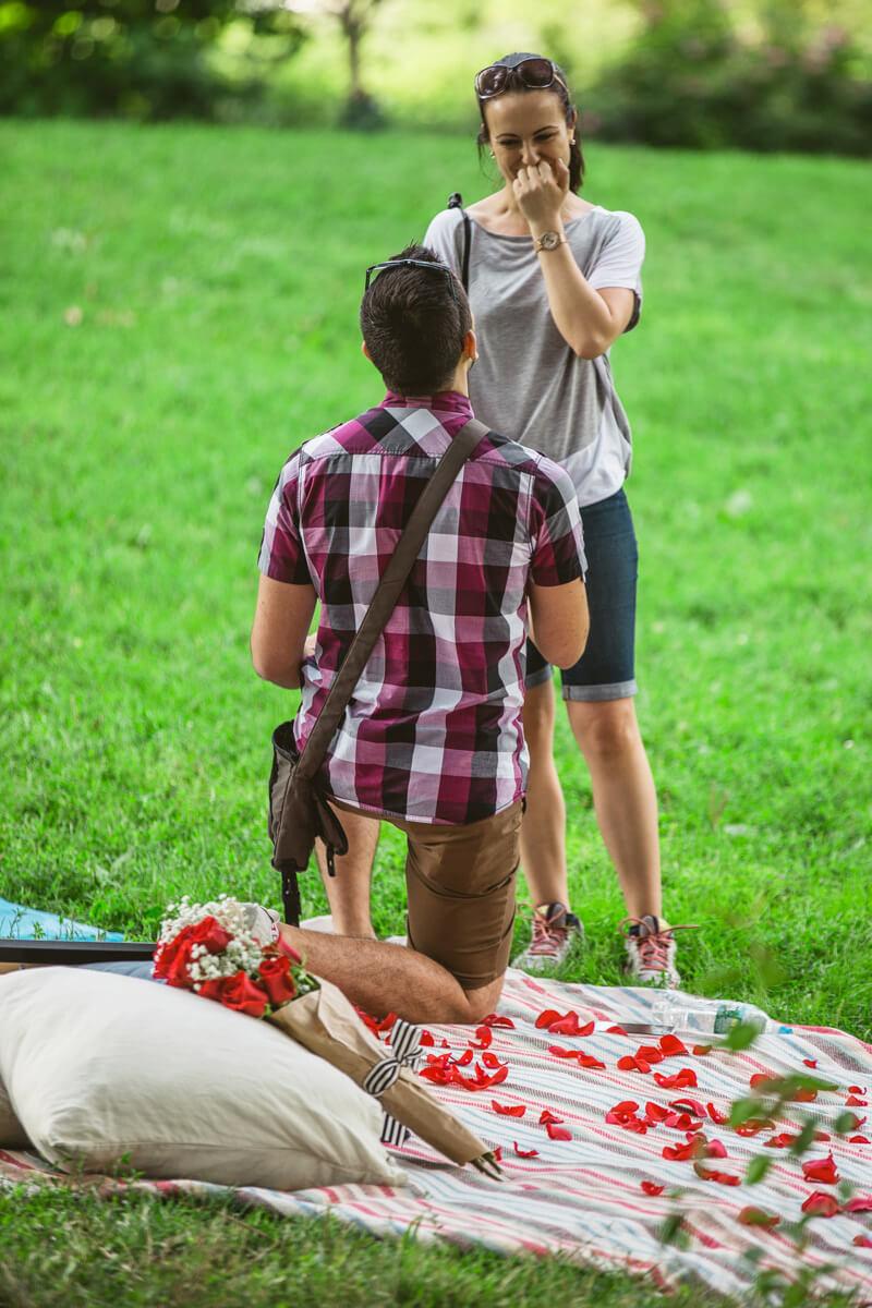 Photo 7 Central Park Picnic Proposal