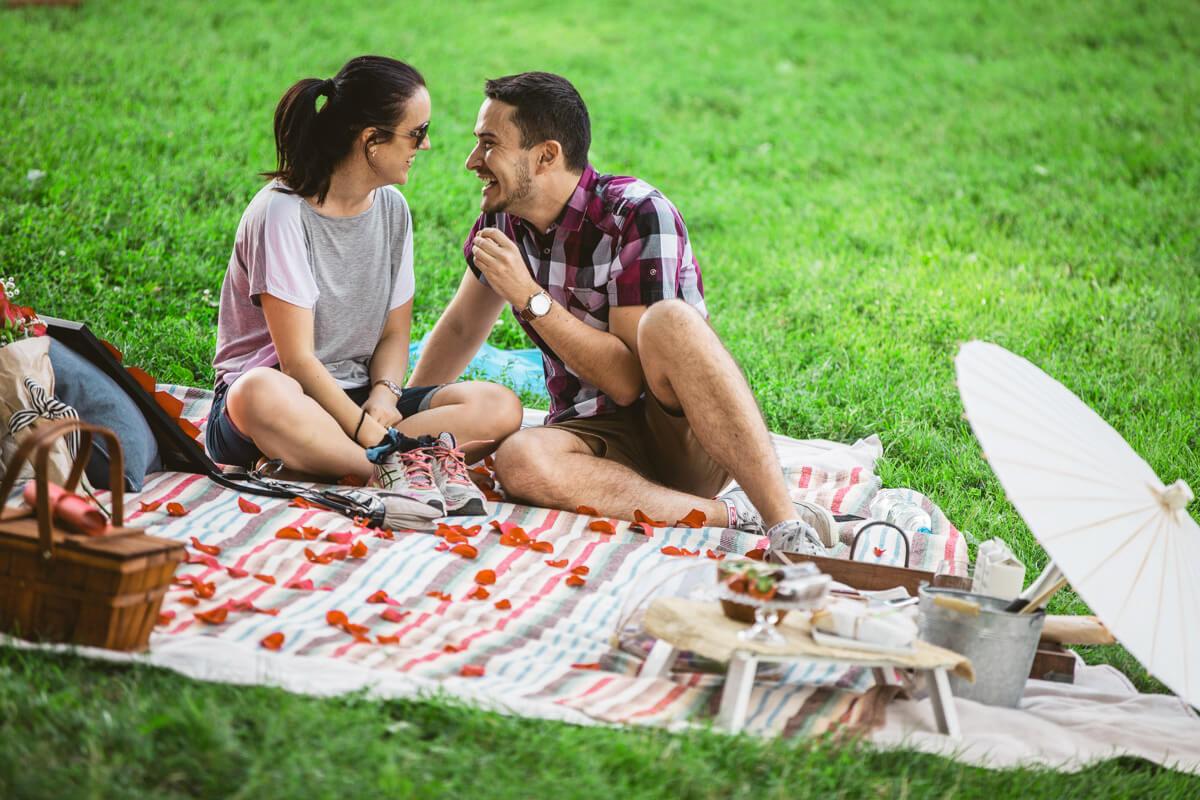 Central Park Picnic Proposal