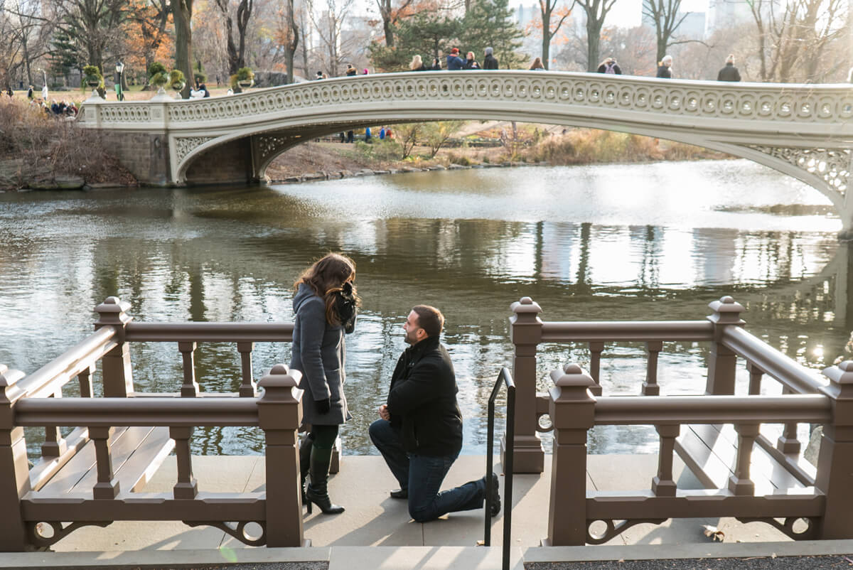 Photo 2 Bow Bridge view Marriage Proposal. Central Park. | VladLeto