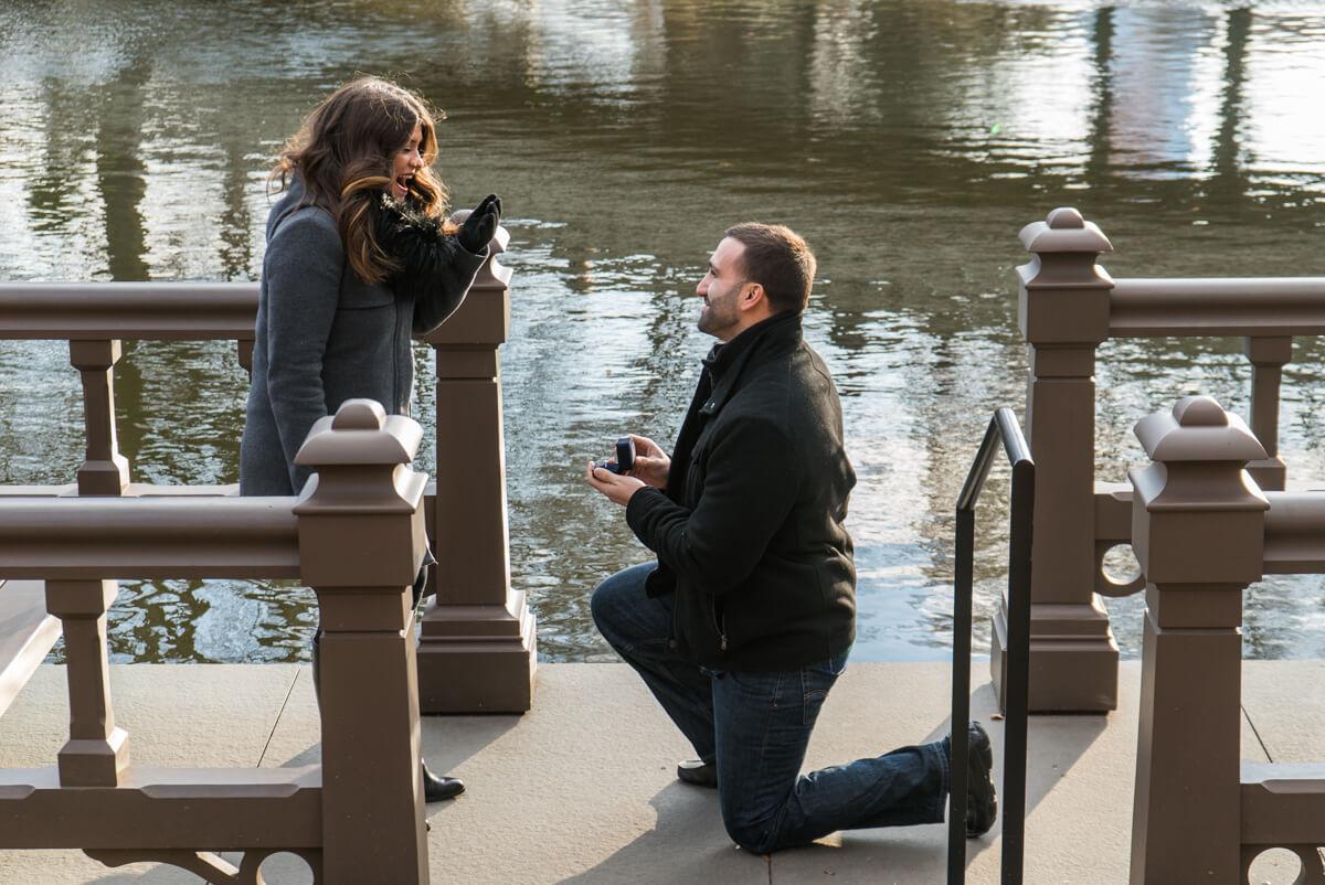 Photo 2 Bow Bridge view Marriage Proposal. Central Park. | VladLeto