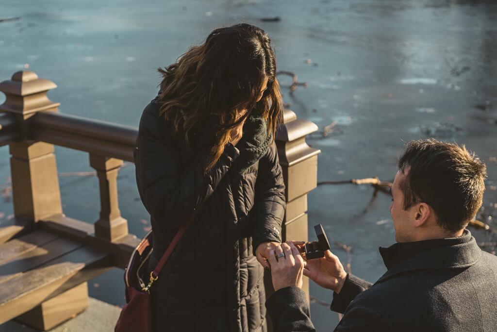 Photo 3 Central Park Love Story | VladLeto