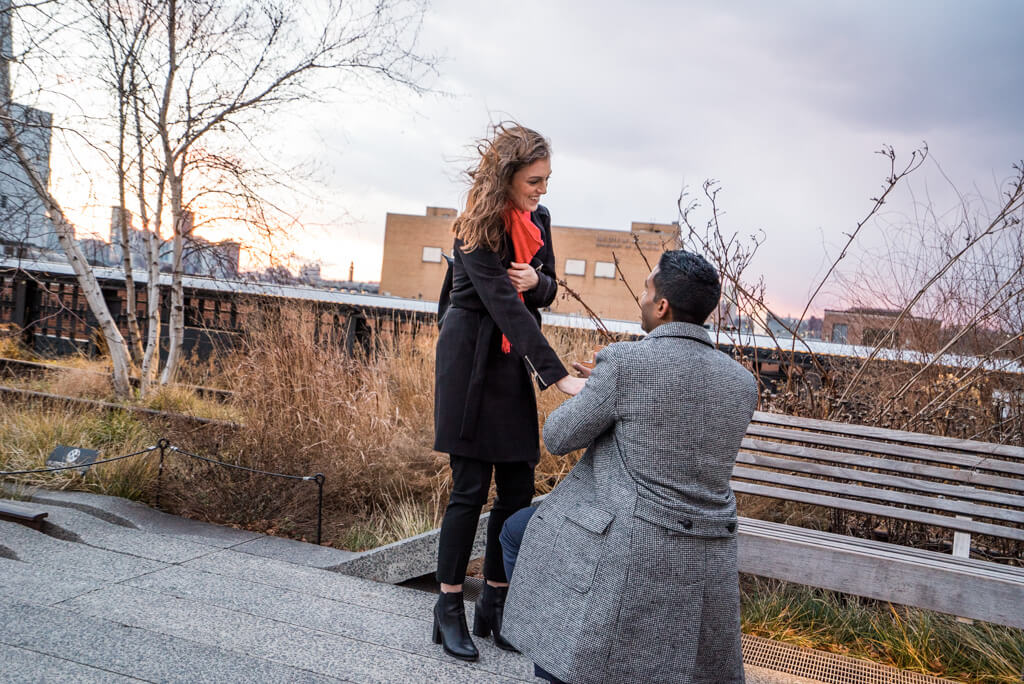 Photo 3 High Line Marriage Proposal 2 | VladLeto