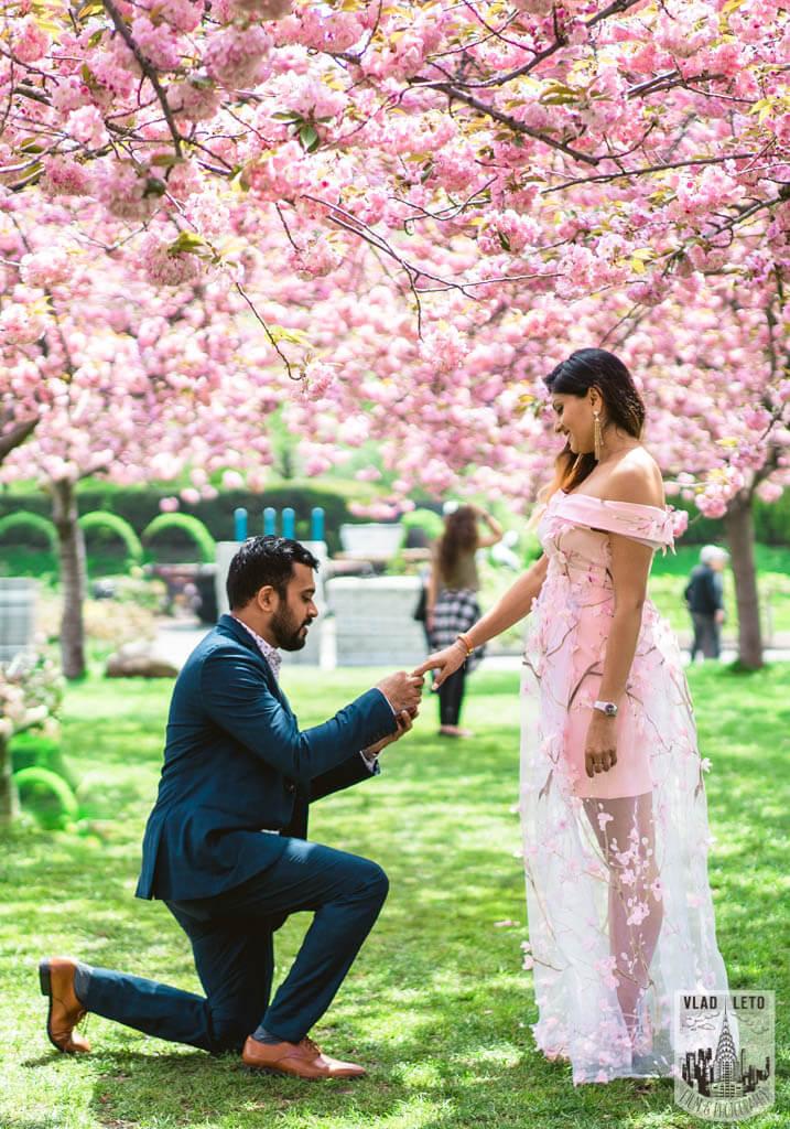 Photo 3 Cherry Blossom Marriage Proposal in Brooklyn Botanical Garden | VladLeto