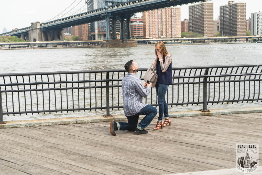 Photo Dumbo Marriage Proposal. | VladLeto
