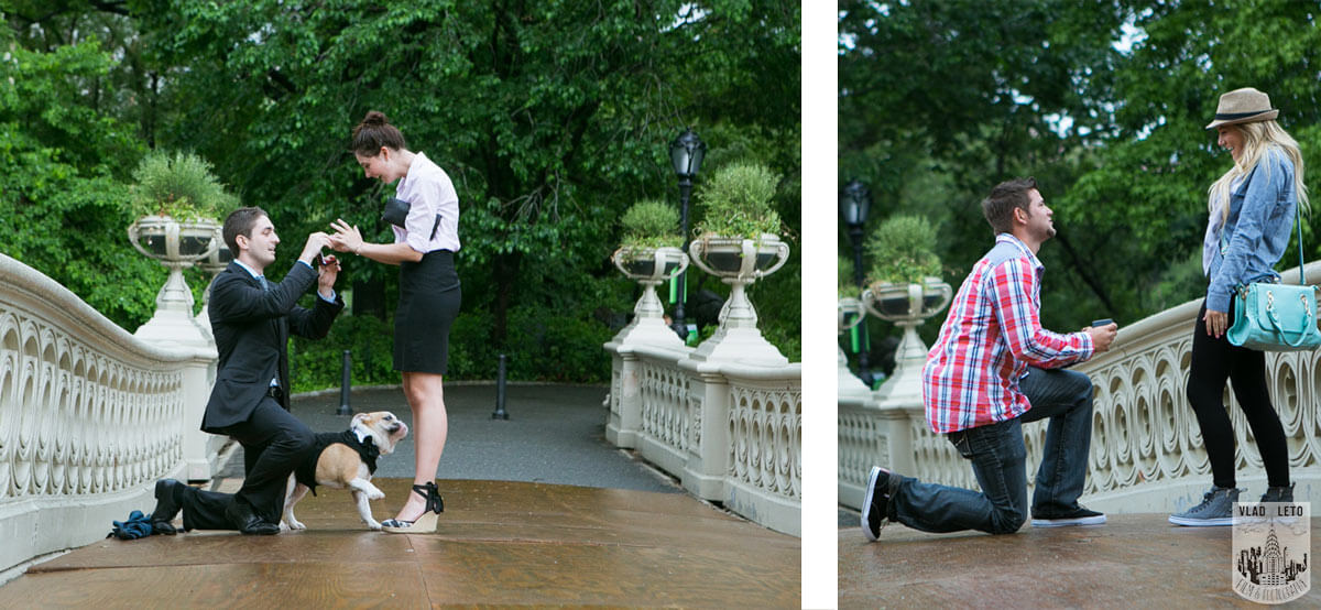 Surprise Proposal in Central Park Bow bridge