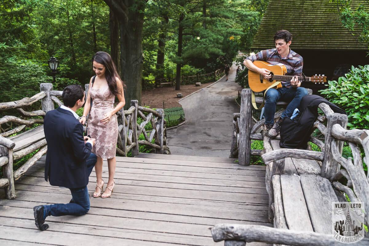 Photo 2 Shakespeare Garden Marriage proposal 2 | VladLeto