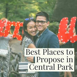 Central Park Proposal: Tips, Spots & Best Places to Proposal in Central Park ( 2019 Edition) | VladLeto