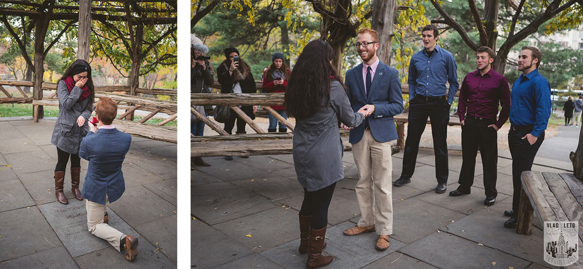 Photo 5 Central Park Proposal: Tips, Spots & Best Places to Proposal in Central Park | VladLeto | VladLeto