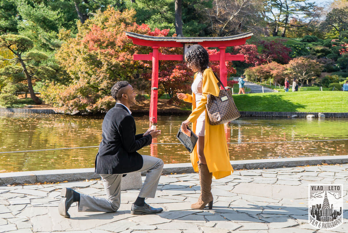 Photo 10 Best Places to Propose in NYC + Tips. | VladLeto