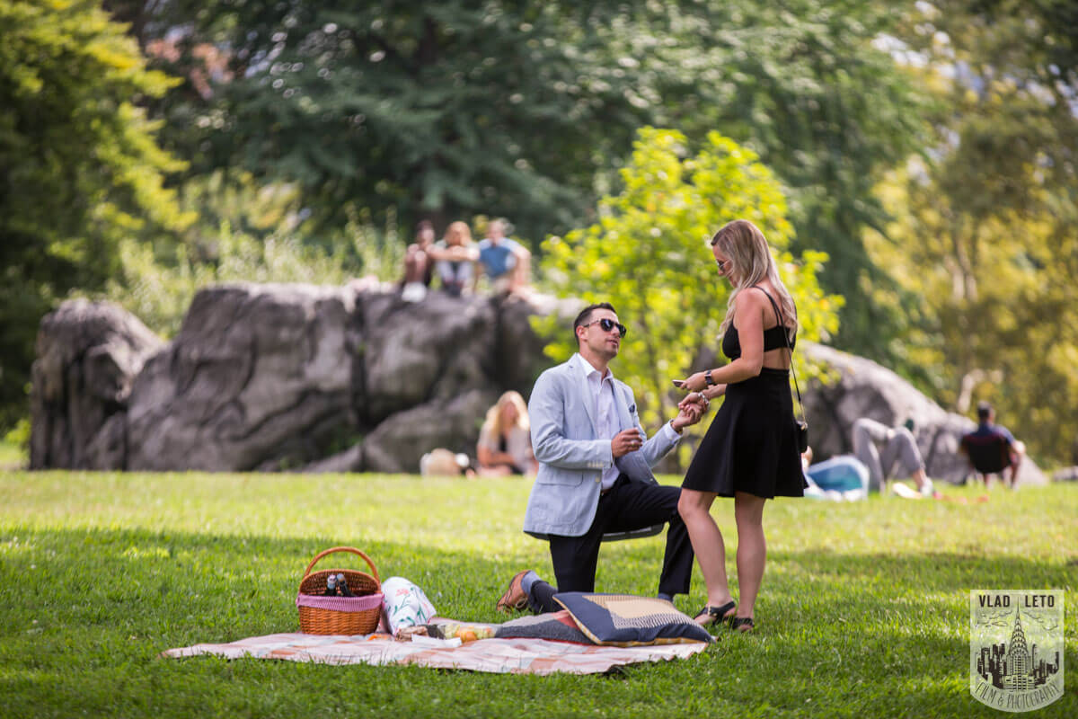Picnic proposal in Central Park, NYC.