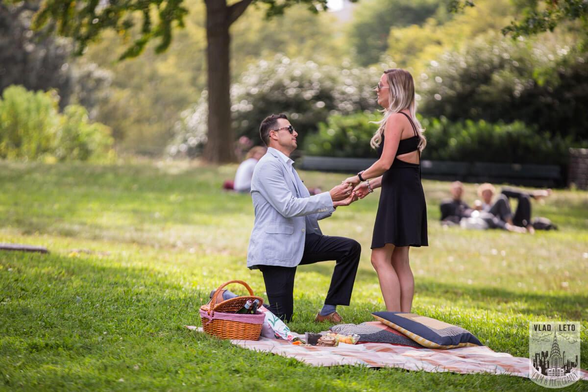 Photo 3 Central Park Picnic Proposal | VladLeto