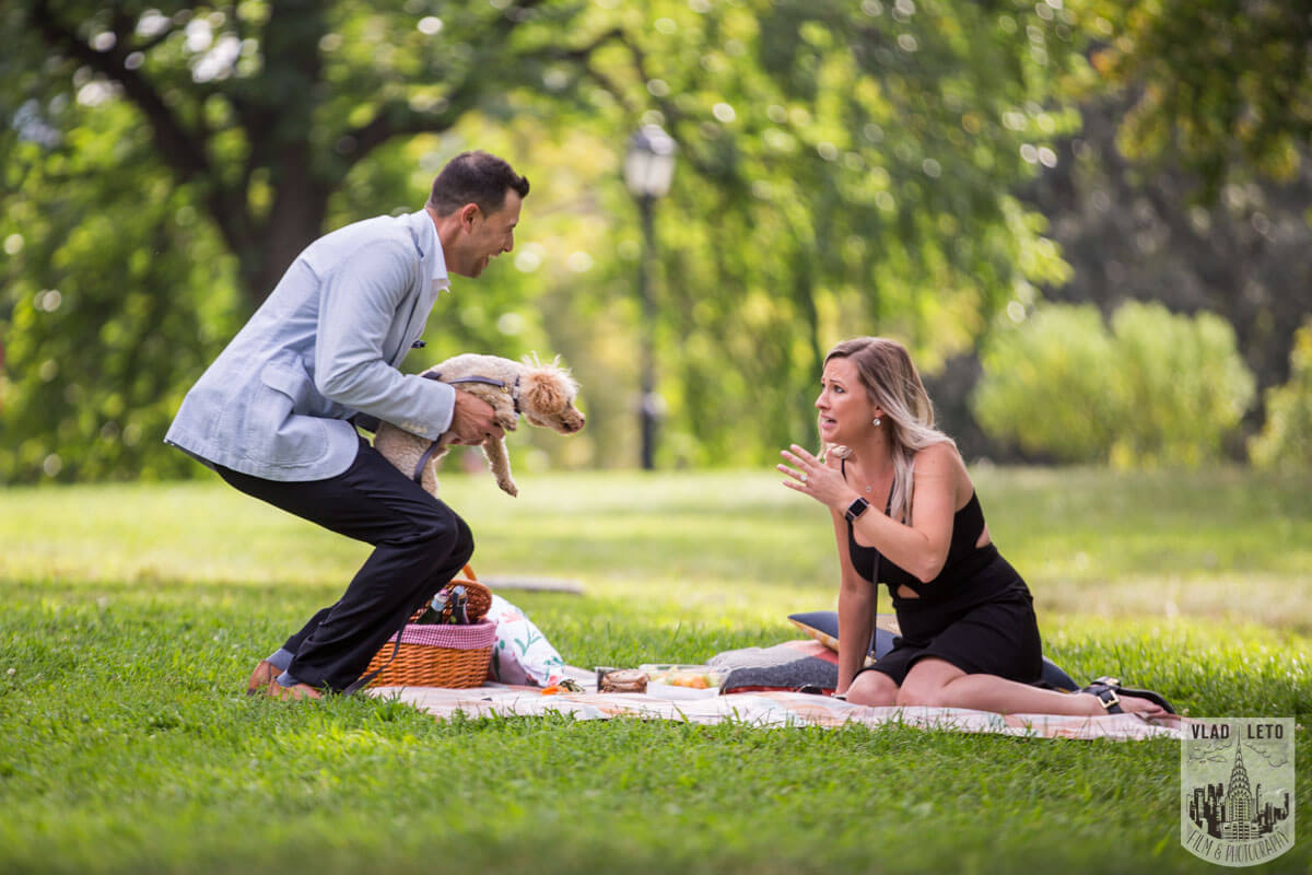 Photo 6 Central Park Picnic Proposal | VladLeto