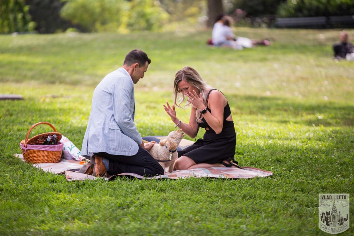 Photo 7 Central Park Picnic Proposal | VladLeto