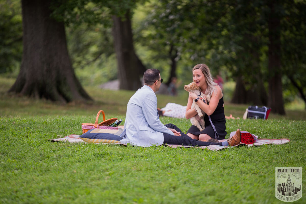 Photo 17 Central Park Picnic Proposal | VladLeto