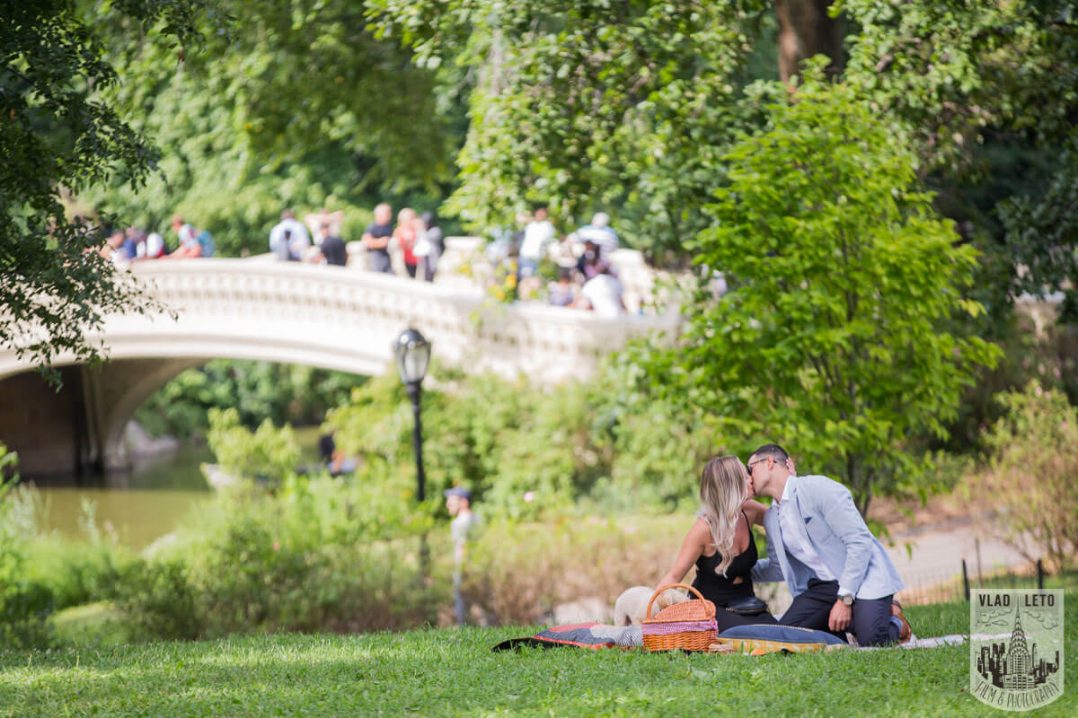 Photo 11 Central Park Picnic Proposal | VladLeto