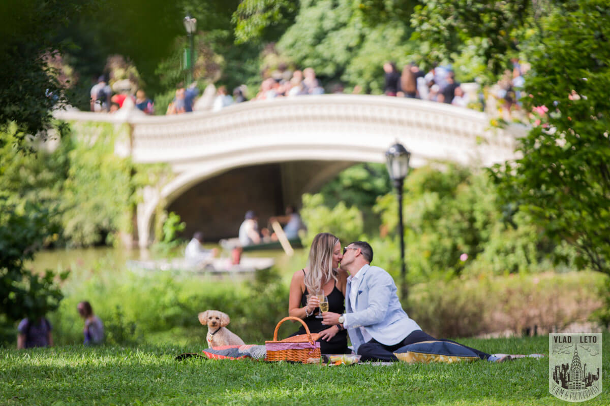 Photo 23 Central Park Picnic Proposal | VladLeto