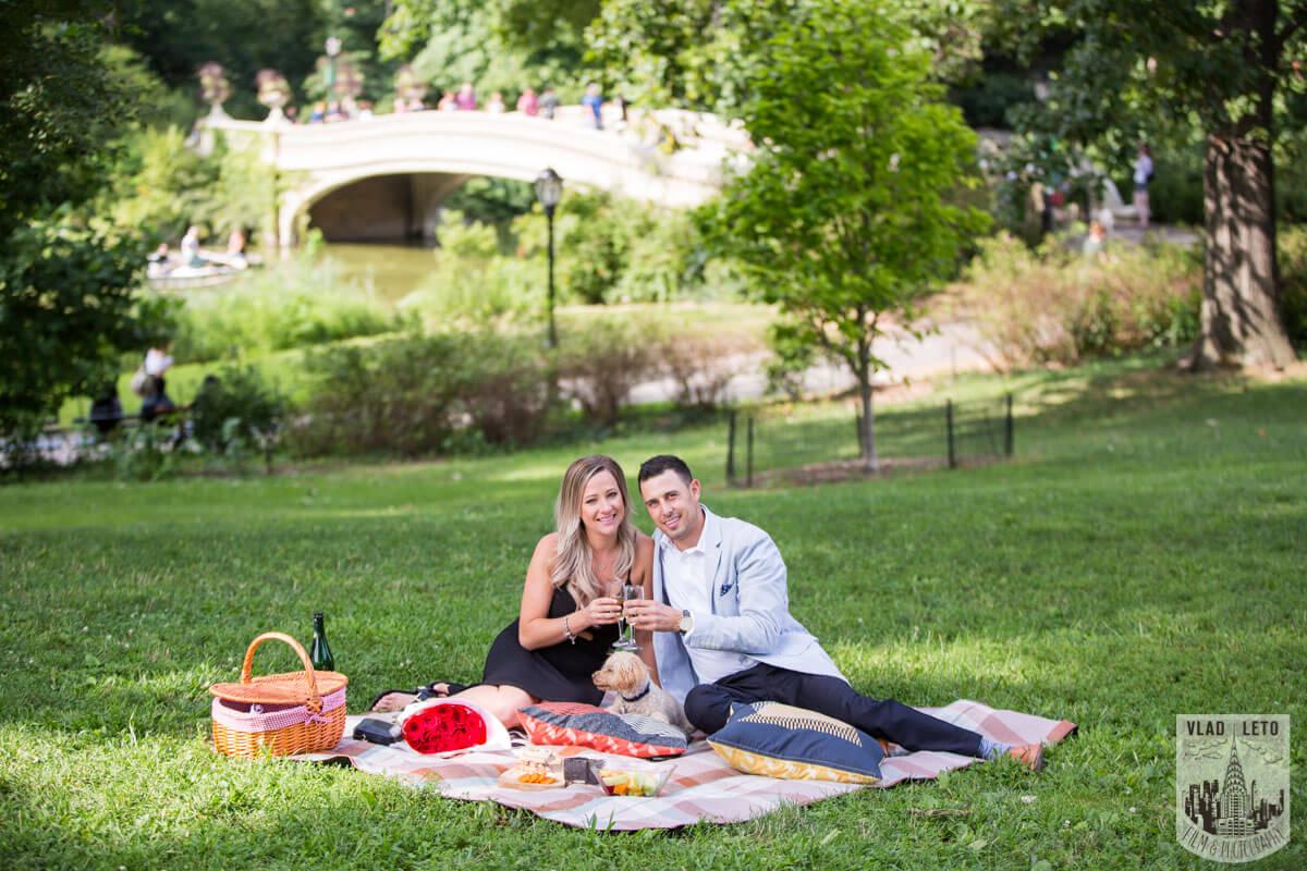 Photo 12 Central Park Picnic Proposal | VladLeto