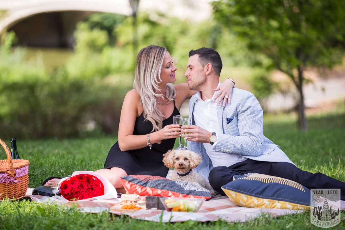 Photo 25 Central Park Picnic Proposal | VladLeto