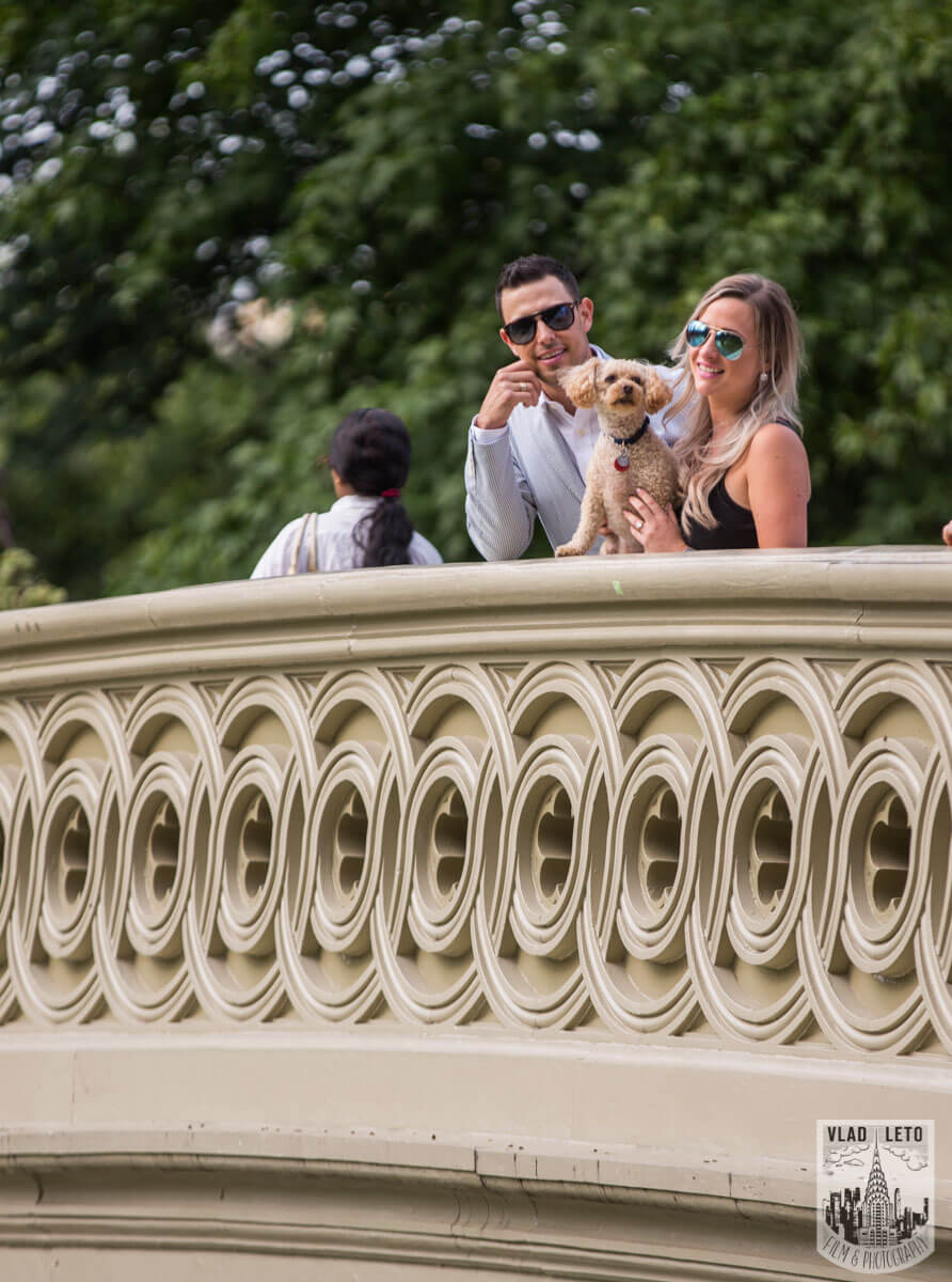 Photo 15 Central Park Picnic Proposal | VladLeto