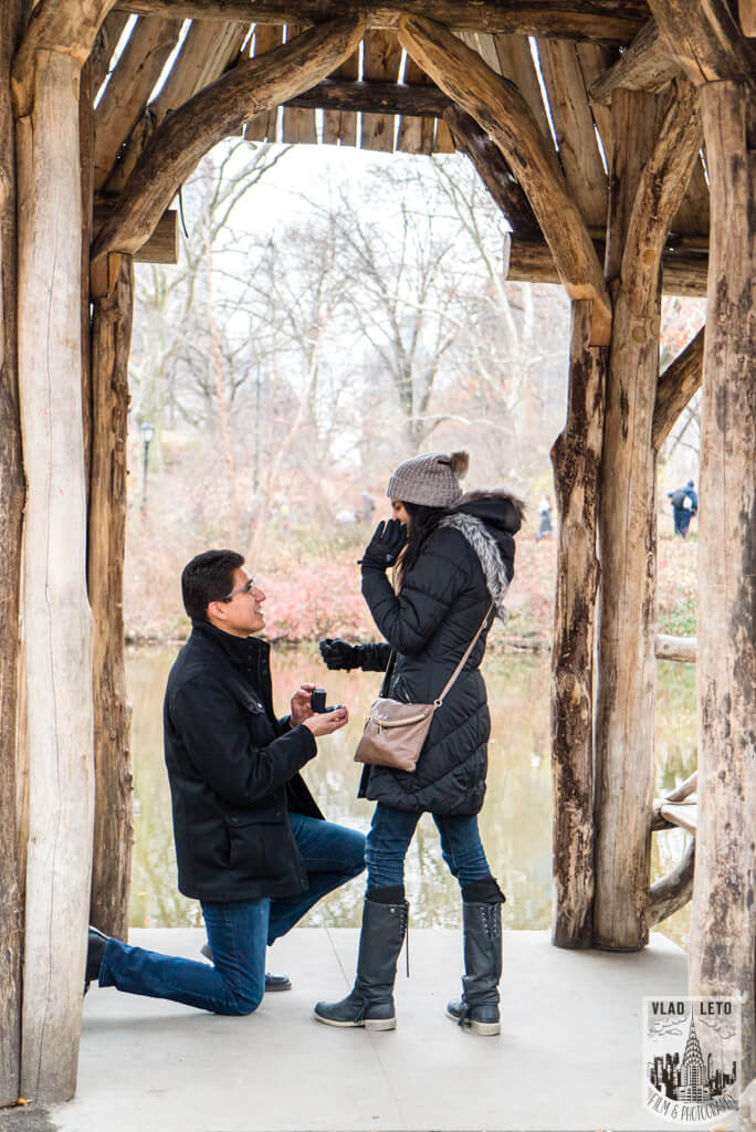 Photo 2 Wagner Cove Surprise Proposal in Central Park | VladLeto