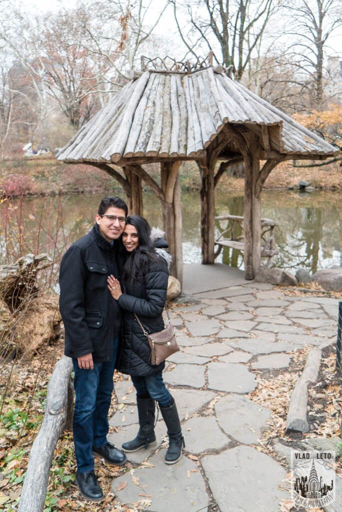 Photo 5 Wagner Cove Surprise Proposal in Central Park | VladLeto