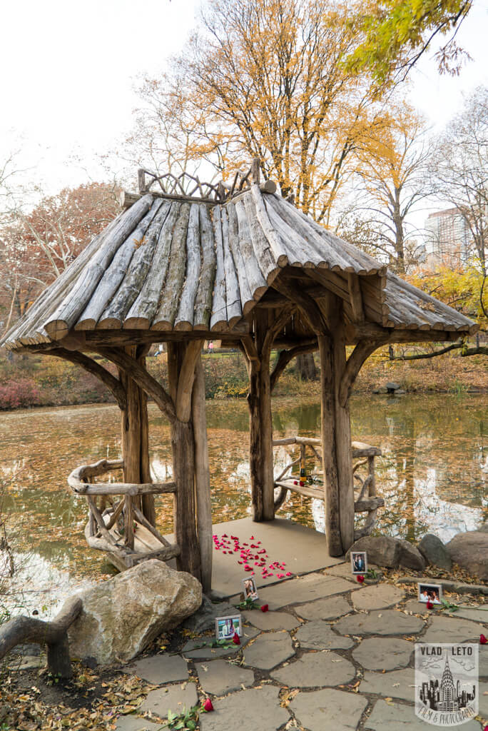 Photo Wagner Cove in Central Park Mariage proposal | VladLeto