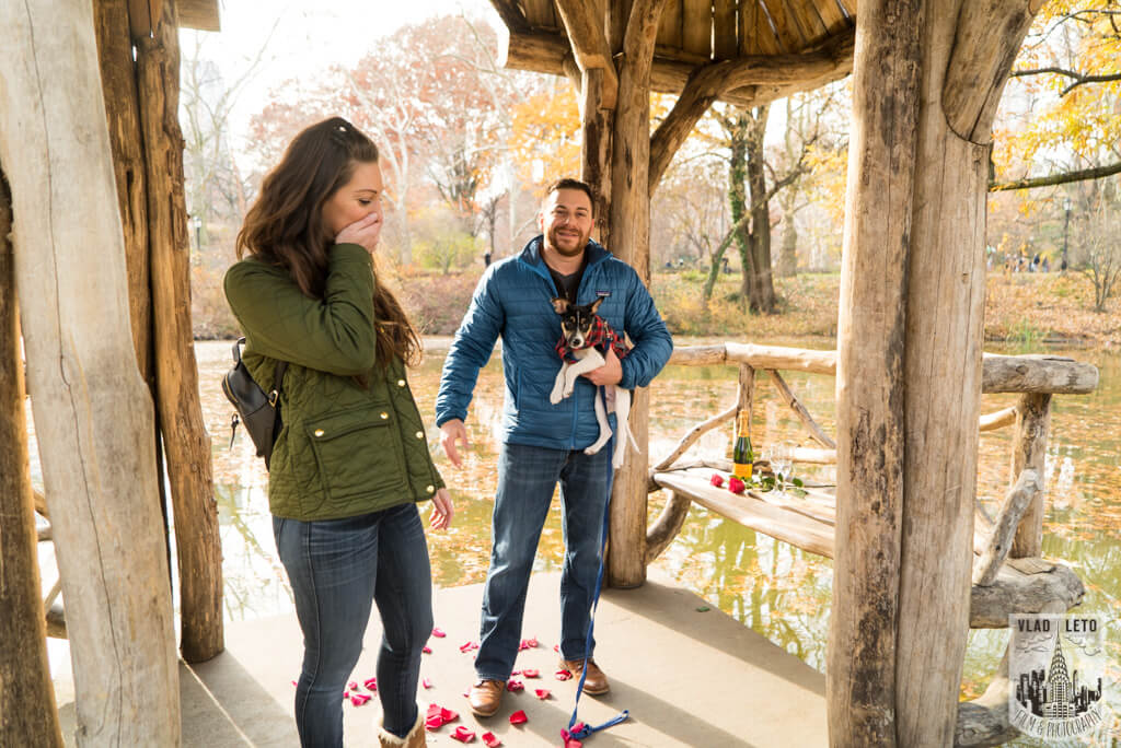 Photo 6 Wagner Cove in Central Park Mariage proposal   VladLeto