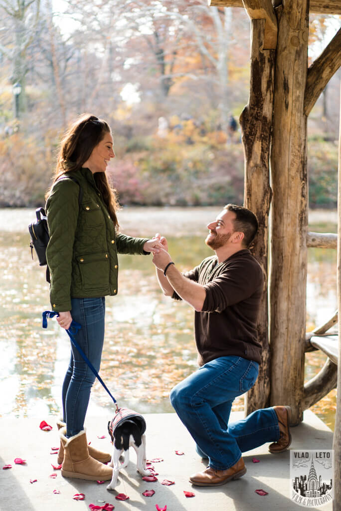 Photo 5 Wagner Cove in Central Park Mariage proposal | VladLeto