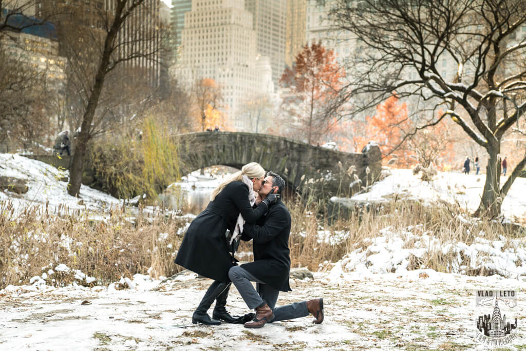 gapstow bridge proposal in central park. photographer Vlad Leto