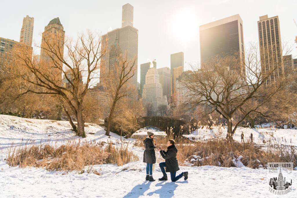 Photo Marriage proposal under Gapstow bridge   VladLeto