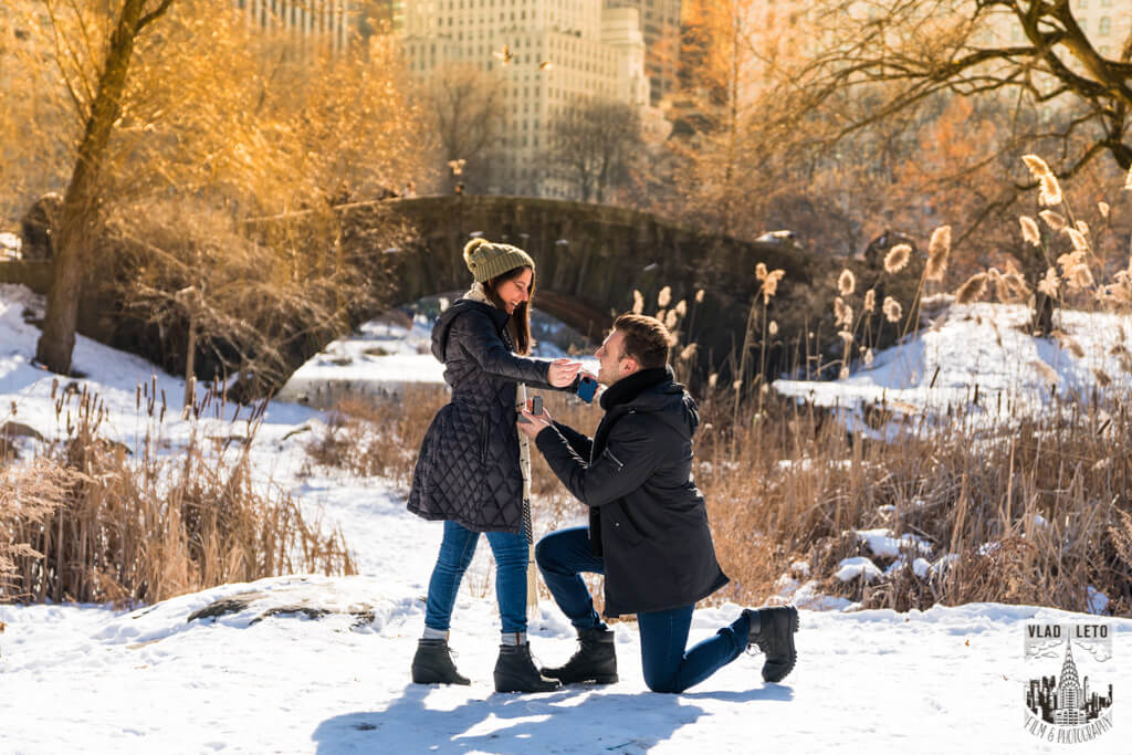 Photo 3 Marriage proposal under Gapstow bridge | VladLeto