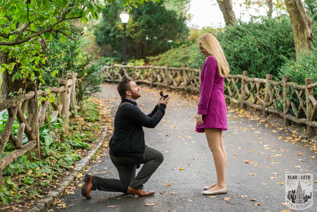 Photo Shakespeare Garden Proposal in Central Park. | VladLeto