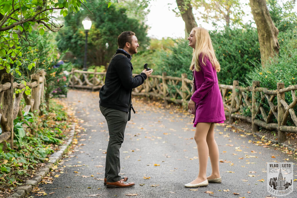 wedding proposal at shakespeare garden central park nyc