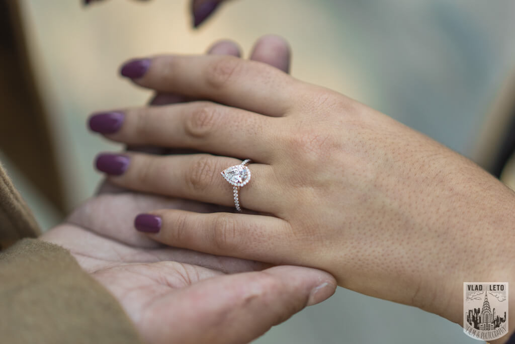 Photo 21 How he Asked featured Proposal story from Central Park | VladLeto
