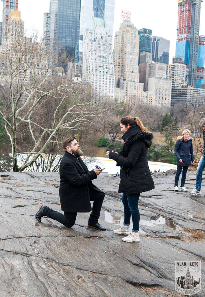 Marriage proposal central park at Cats Rock