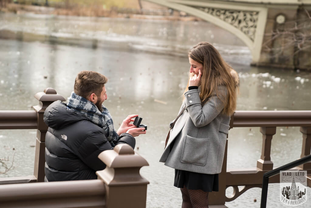 engagement proposal in central park